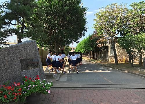 【市立富勢中学校】 立派な並木が歴史を表します