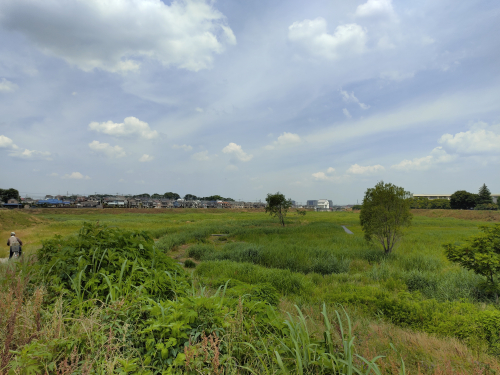 川越市寺尾遊水池 遊歩道(徒歩8分)郊外ならではの豊かな自然もあります。